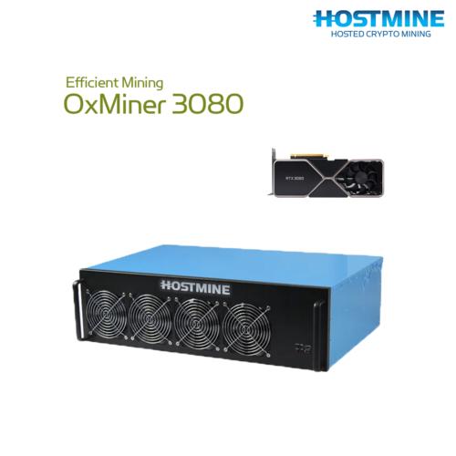 0xMiner 3080 2